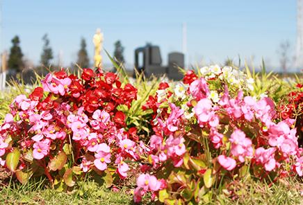 花木の咲きほこる市川の杜霊園